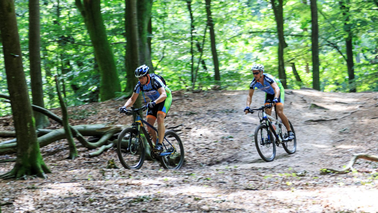 Visit Veluwe Mountainbike